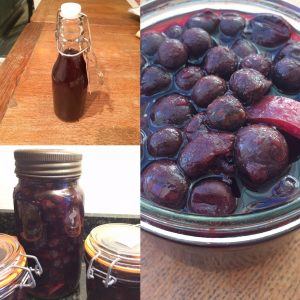 Sloe Gin from start to finish
