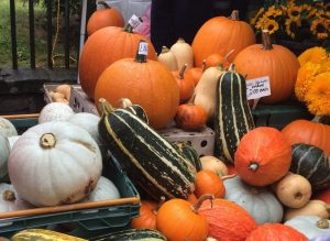 Squashes and pumpkins make great soup