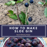 A really delicious alcoholic drink that can be drunk neat or added to a cocktail, sloe gin is easy to make with fruits from the hedgerow