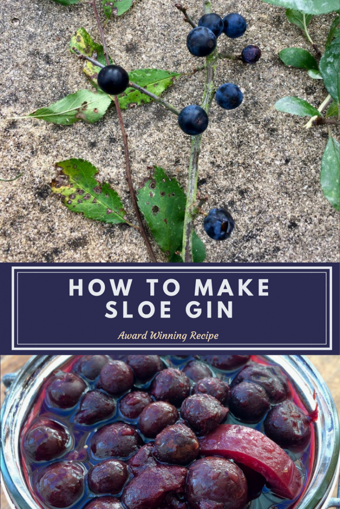 Sloe gine is a really delicious alcoholic drink that can be drunk neat or added to a cocktail, sloe gin is easy to make with fruits from the hedgerow