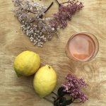 Elderflower cordial or syrup recipe