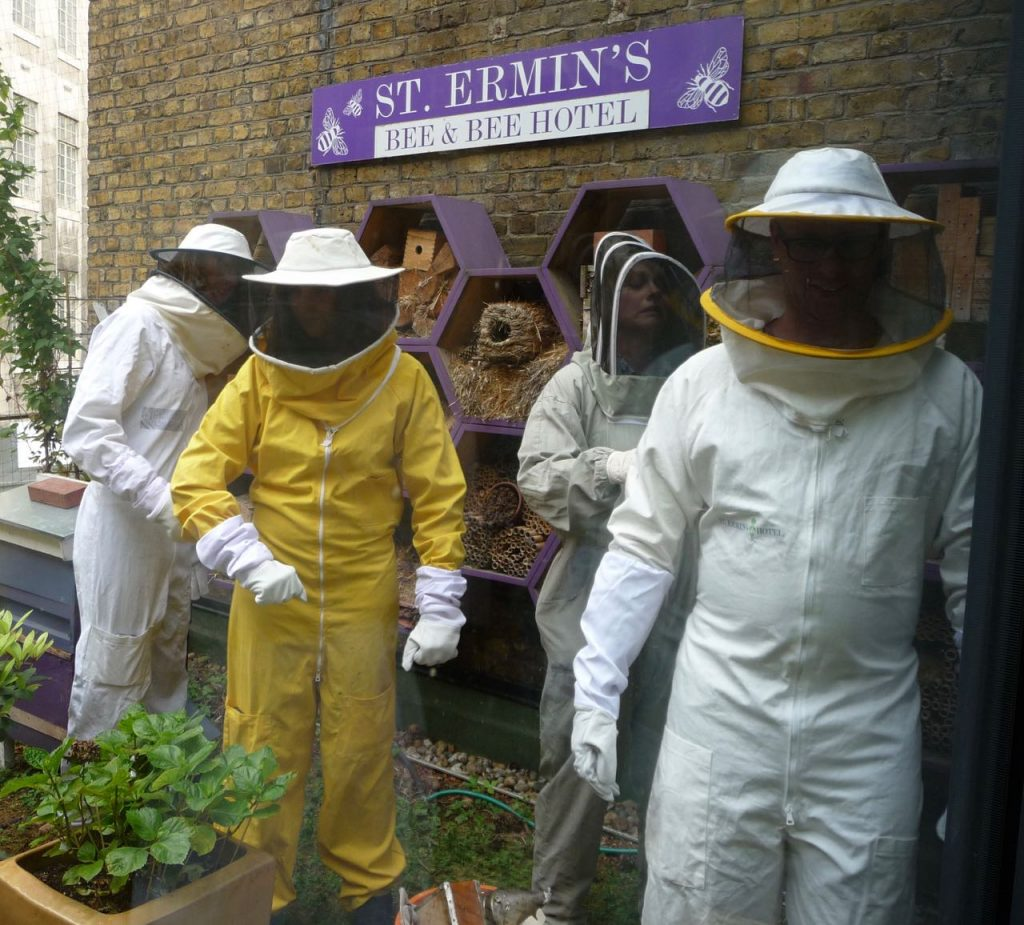 Lesser spotted beekeepers