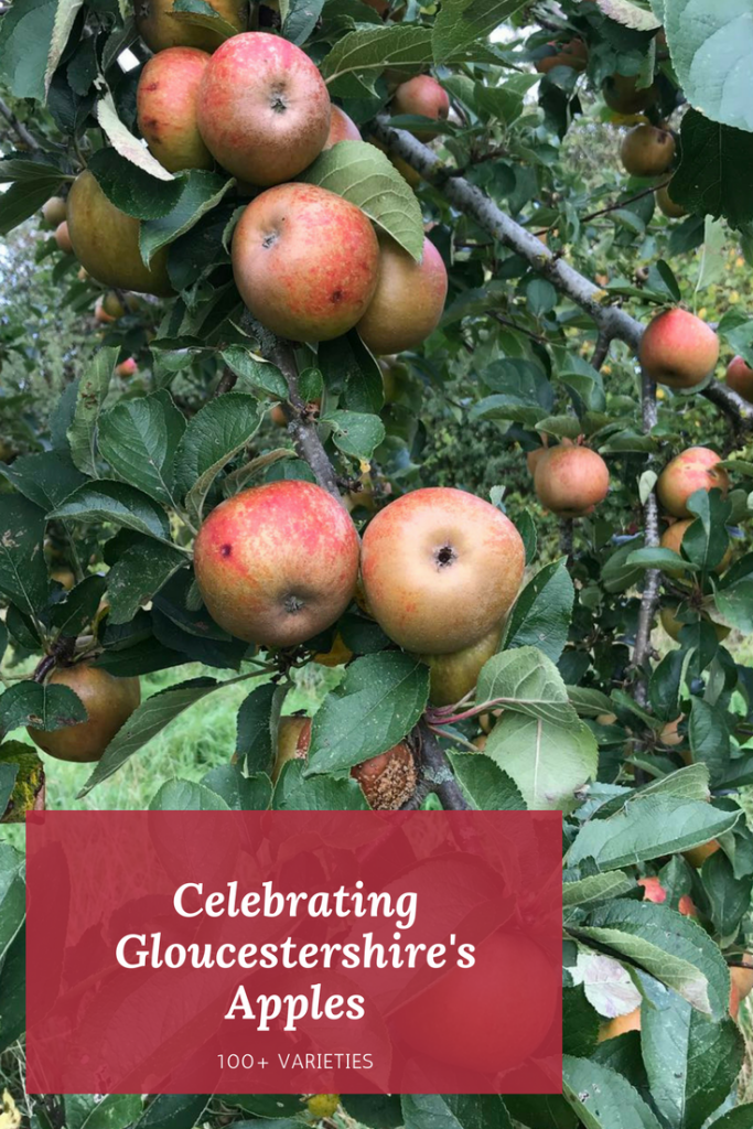 Discover a magical places that has been growing and selling apples for more than 100 years