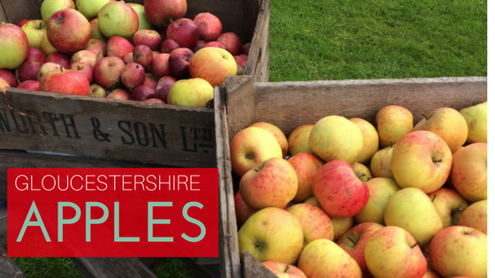 More than 100 apples are found in Gloucestershire