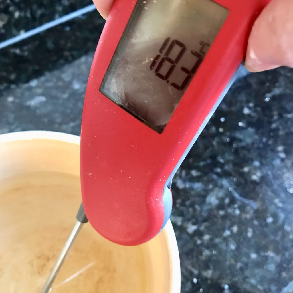 Measuring the Water Temperature with a thermapen