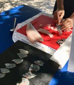 Cutting the sea bass for tartare and sashimi