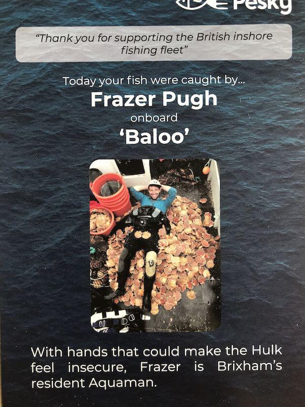 Pesky Fish
