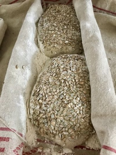 Bread proving on couche